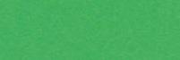 KARTON kolorowy 170g, A2, zielony