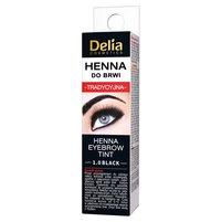 Delia Cosmetics Henna do brwi tradycyjna 1.0 black 1szt