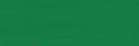KARTON kolorowy 170g, A2, ciemnozielony