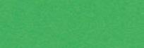 KARTON kolorowy 170g, A2, zielony (1)