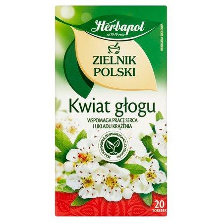 Herbapol Zielnik Polski Kwiat głogu Herbatka ziołowa 40g (20 tb) (2)