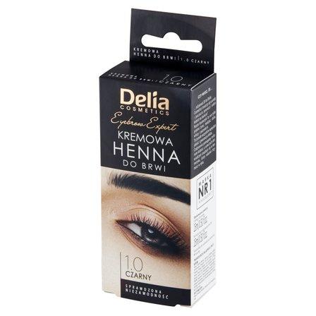 Delia Cosmetics Eyebrow Expert Kremowa henna do brwi 1.0 czarny (1)