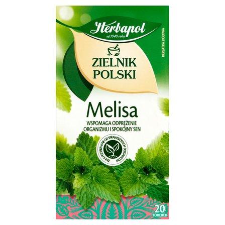 Herbapol Zielnik Polski Herbatka ziołowa melisa 40g (20 tb) (2)