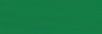 KARTON kolorowy 170g, A2, ciemnozielony (1)